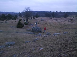 Natuurgebied Zweden