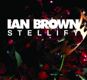 Ian-Brown-Stellify